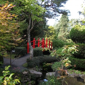 Japanese gardens tully co.kildare